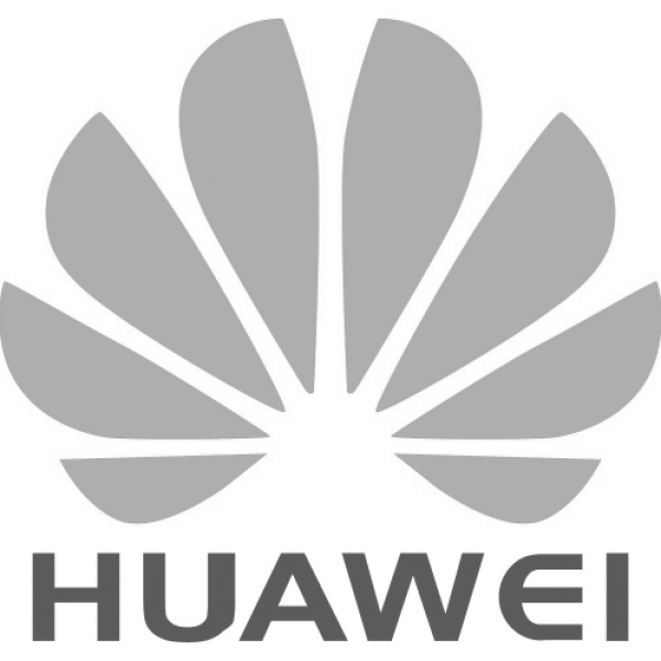 C04E10055 04044898 Huawei Access Trunk Cable